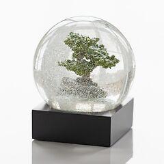 Evergreen Schneekugeln Bonsai