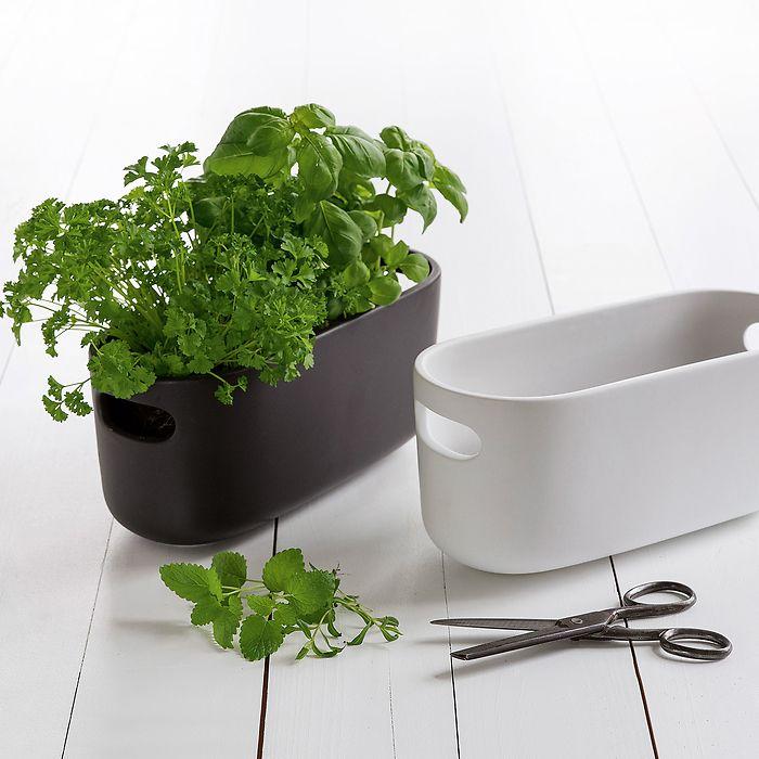 Herb Organiser